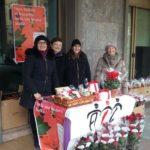 Stelle di Natale AIL Modena 2017 Castelfranco