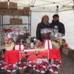 Stelle di Natale AIL Modena 2017 - Maranello