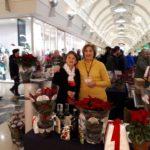 Stelle di Natale AIL Modena 2017 - Modena Grandemilia