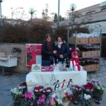 Stelle di Natale AIL Modena 2017 - Modena Pasticceria Giulia