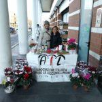 Stelle di Natale AIL Modena 2017 - Modena la rotonda