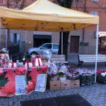 Stelle di Natale AIL Modena 2017 - Montale Rangone