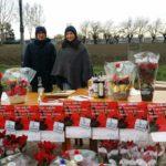 Stelle di Natale AIL Modena 2017 - Novi