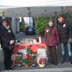 Stelle di Natale AIL 2017 Modena Portile