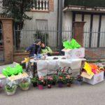 Giovani volontari a Cavezzo