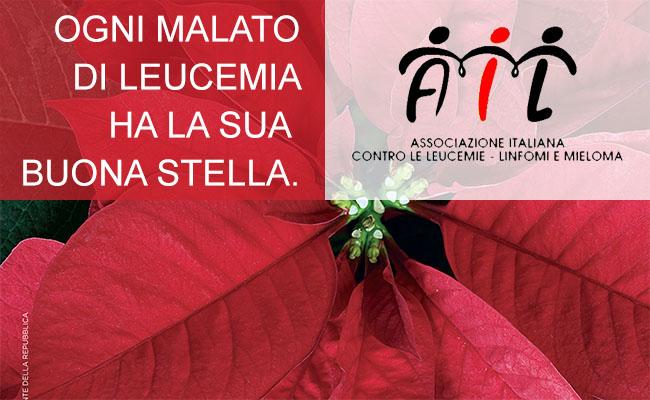Stella Di Natale Ail 2021.Campagna Stelle Di Natale Ail 7 8 9 Dicembre 2018 Ail Modena Onlus